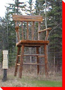 Large Chair - Ghost Lake, Alberta