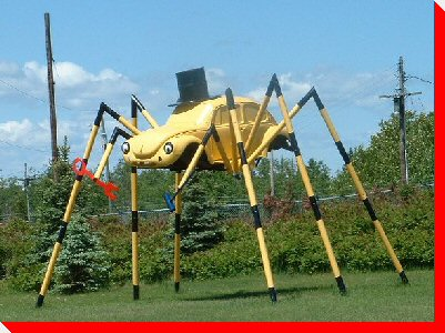 volkswagen spider