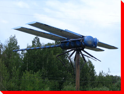 World's Largest Dragonfly